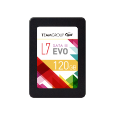 SSD накопитель 120Gb TEAM GROUP L7 Evo